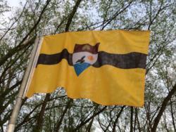 La bandiera ufficiale di Liberland