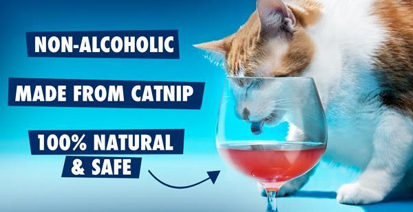 Il vino analcolico per felini