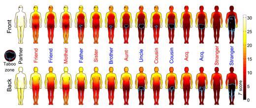 Il grafico dell'università di Oxford con i dati raccolti durnate lo studio della Taboo Zone