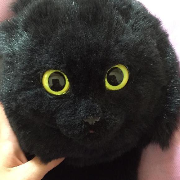 Le borse gatto, ecco quella nera