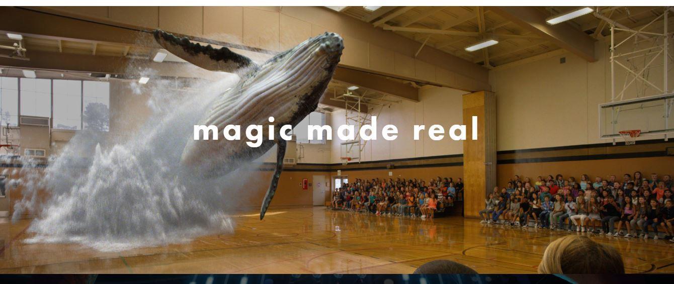 Una balena in una palestra scolastica grazie alla realtà aumentata