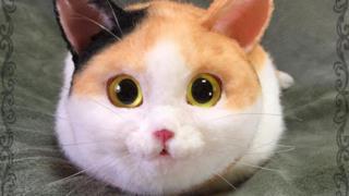 I gattini-borsa estremamente realistici sono fatti a mano in Giappone