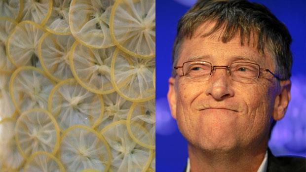 Bill Gates e preservativi