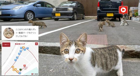 I gatti di Cat Street View sulla mappa