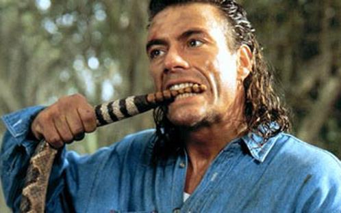 Una serie action comedy con protagonista Jean-Claude Van Damme: che ne pensi?