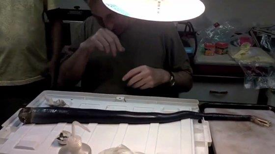 Studio sul verme delel Filippine