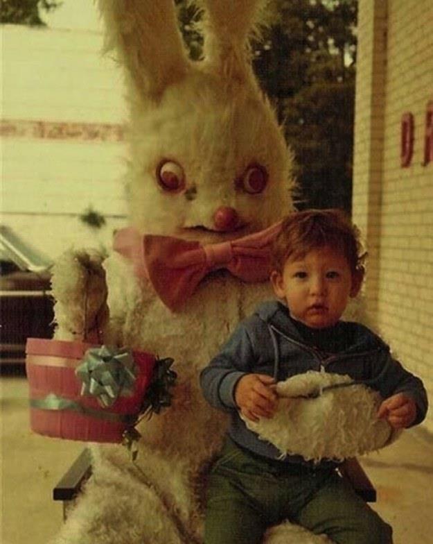 Questo è il coniglio del Sacro Graal dei Monthy Piton