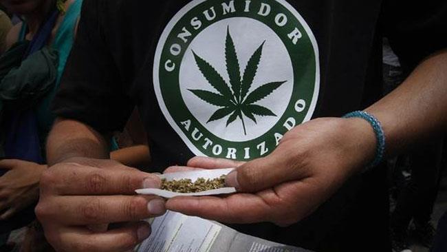 Fumare Marijuana è un diritto umano secondo i giudici messicani