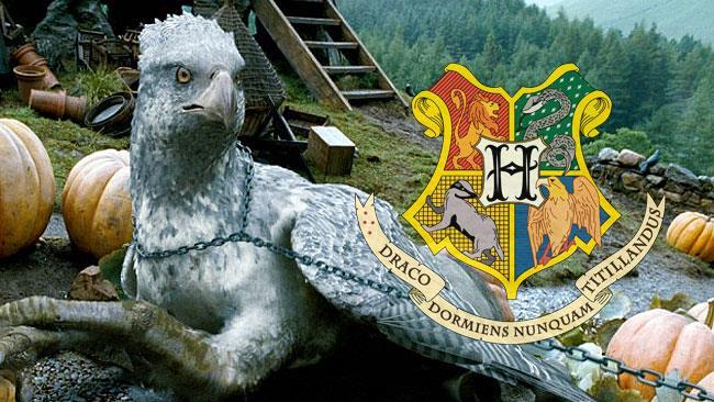 Fierobecco a Hogwarts