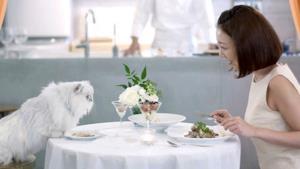 Una donna a cena con il proprio gatto grazie al servizio di catering offerto da Nestlé Japan.