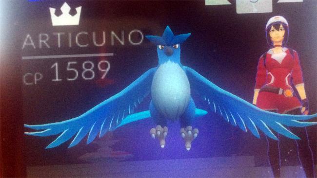 Niantic rimuove i Pokemon leggendari ottenuti dagli utenti di Pokemon GO