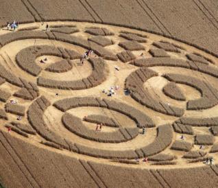 Crop circles, cerchi nel grano, in una foto aerea