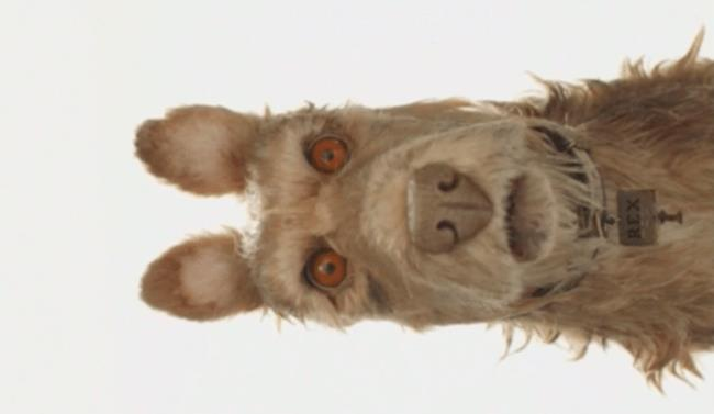 Wes Anderson, cast (vocale) all star per Isle of Dogs