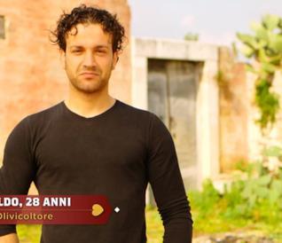 Aldo, 28 anni, olivicoltore