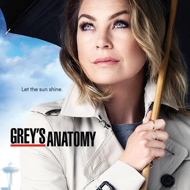 Grey's Anatomy - Stagione 12 | MondoFox