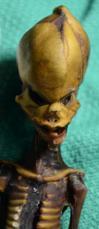 Lo scheletro di Ata, ritrovato in Cile