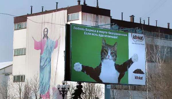 Gesù e gatto su cartellone