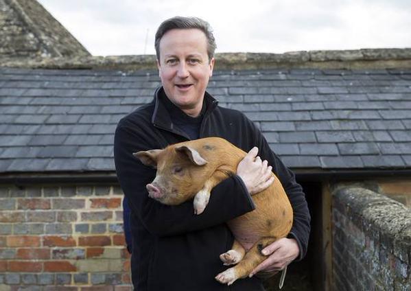 David Cameron, al centro del #PigGate