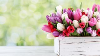 Un vaso pieno di fiorni - Fiori, le più belle immagini per il buongiorno, buonanotte e compleanno