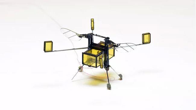 Il modello definitivo di RoboApi