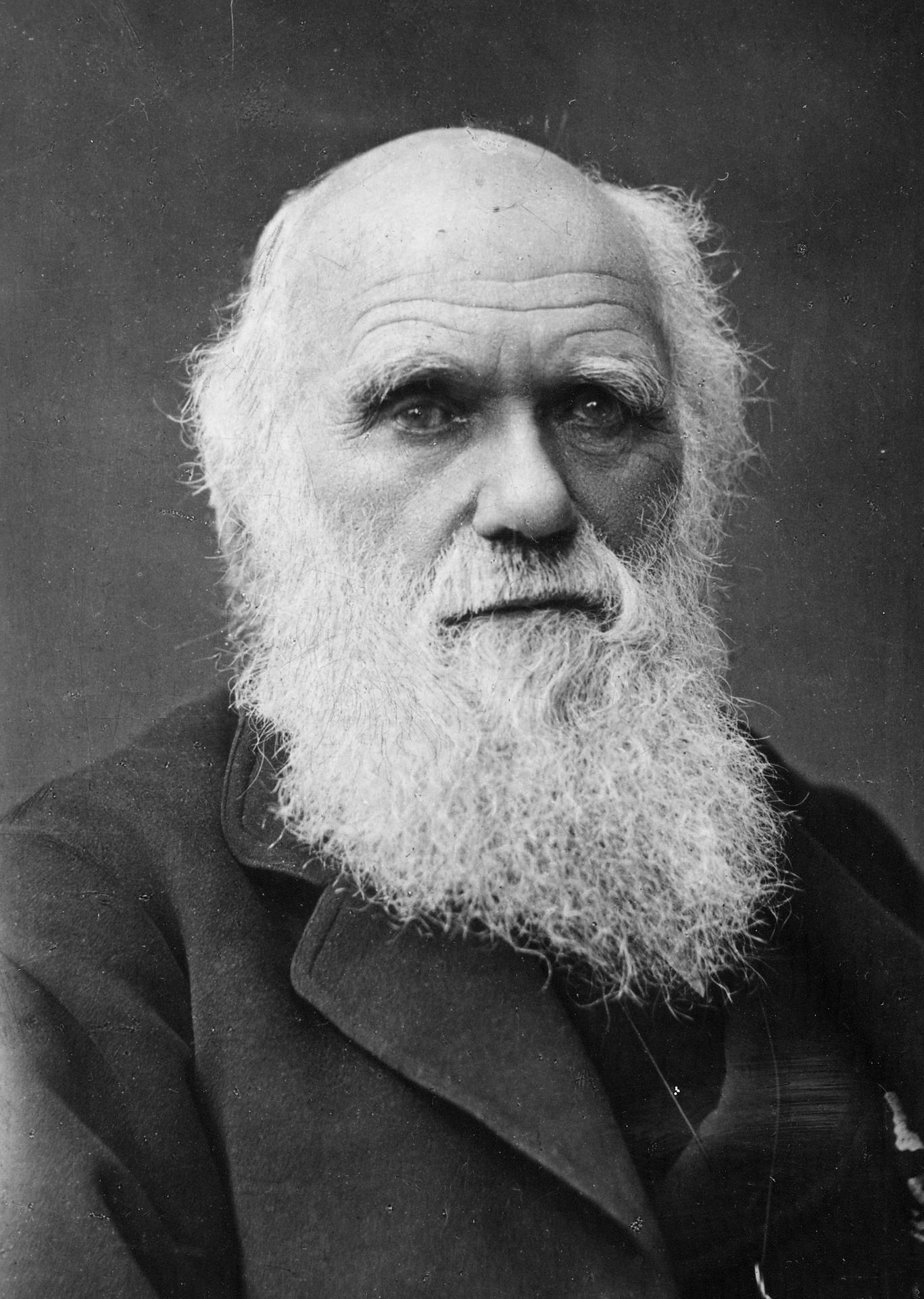 Charles Darwin, musa dei Darwin Awards