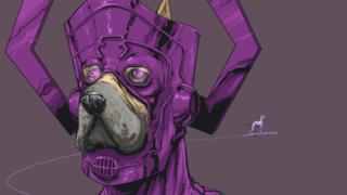 Galactus in versione canina