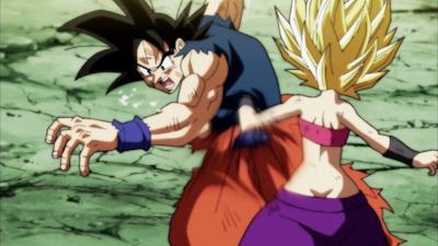 Goku contro Caulifla