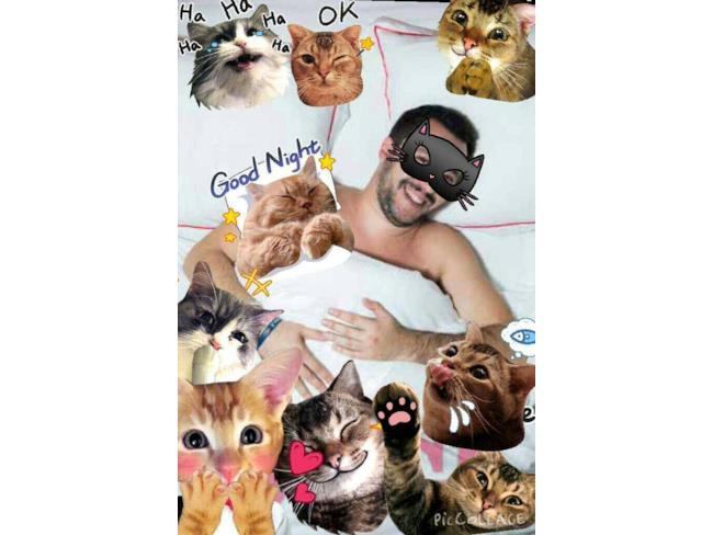 Il Salvini della Buona Notte, circondato da gattini
