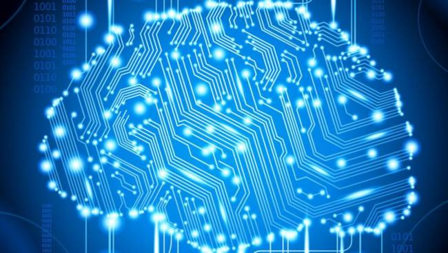 Un ipotetico cervello digitale