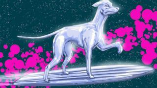 Silver Surfer in versione canina