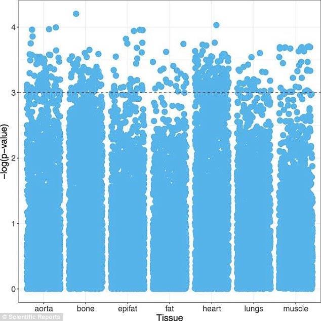 Un grafico predittivo elaborato dal sistema sulla morte di un paziente entro cinque anni, analizzando le condizioni di sette tessuti diversi