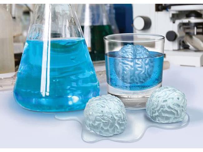 Stampini ghiaccio a forma di cervello