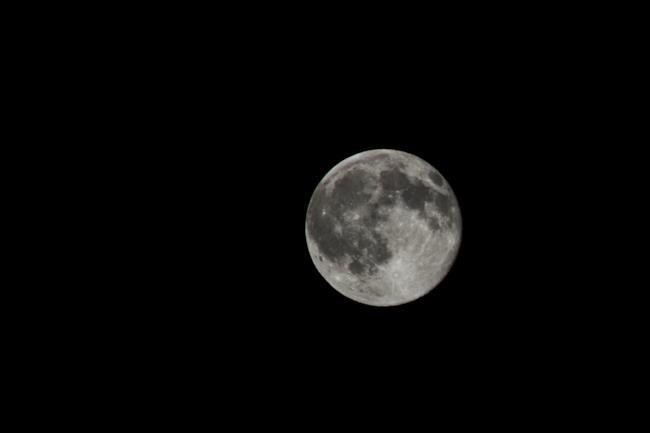 Una splendida luna piena