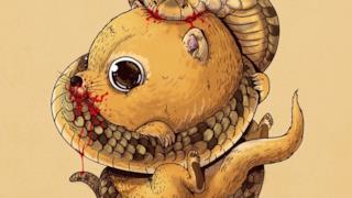 Una mangusta affronta un cobra