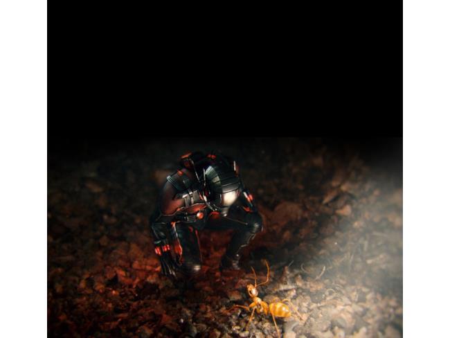 Ant-Man comunica con una delle sue formiche