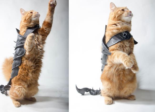 L'armatura per gatto creata con la stampa 3D
