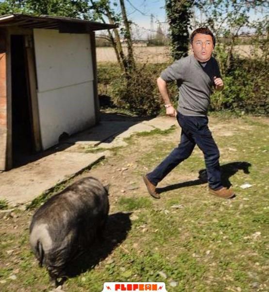 Renzi inseguito dal miale di Salvini