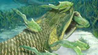 Il nuovo fossile di pesce scoperto in Cina