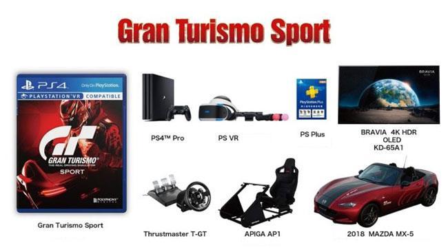 Limited Edition di Gran Turismo Sport, venduto a 47mila dollari.