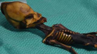 Ata, la mummia di Atacama
