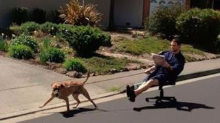 Uomo si fa portare in giro dal cane