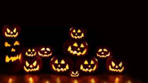 Le zucche, uno dei simboli principali di Halloween
