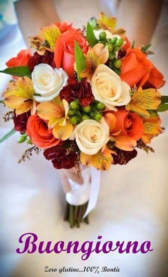 Scarica gratis immagini di fiori per il buongiorno for Foto belle di buongiorno