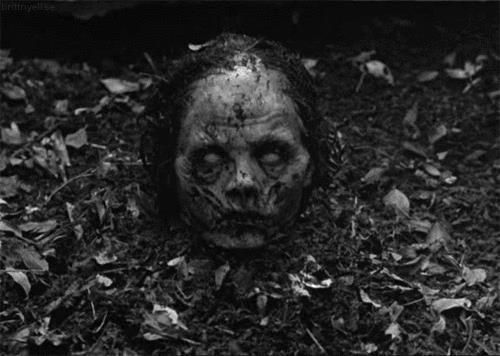 Le migliori immagini di Halloween da scaricare gratis - Zombie