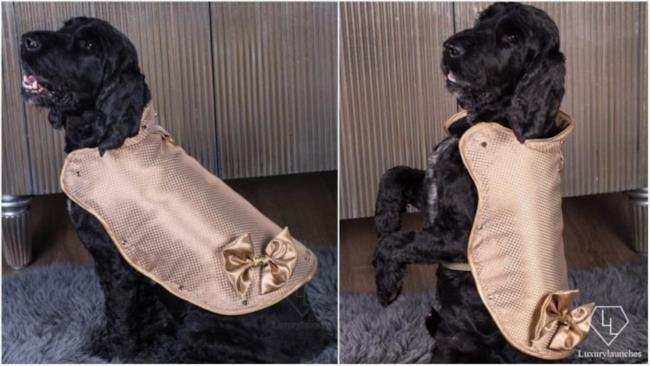 Sembra un cappotto Chanel...