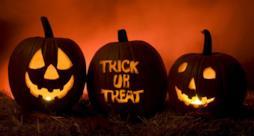 Dolcetto o scherzetto: le zucche di Halloween.