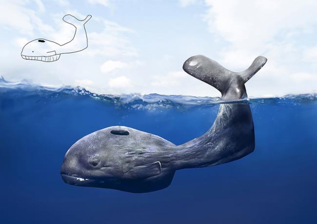 Balena creata con Photoshop e disegno originale