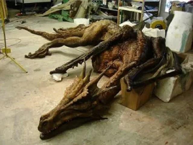 Resti di un finto scheletro di drago ritrovato nel 1996