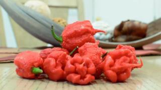 Il peperoncino piccante
