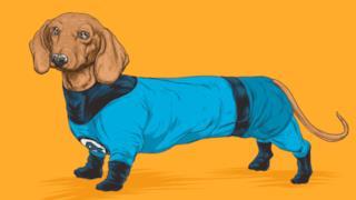 Mister Fantastic in versione canina